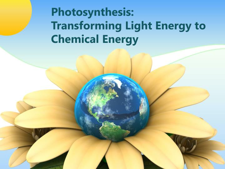 photosynthesis transforming light energy to chemical energy n.