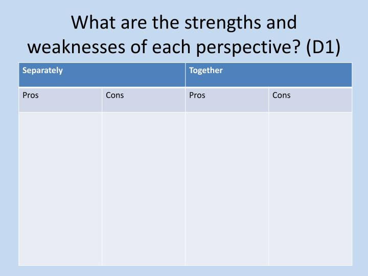 What are the strengths and weaknesses of each perspective? (D1)