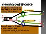 chromosome erosion