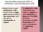 how does dna replication differ in prokaryotic cells and eukaryotic cells