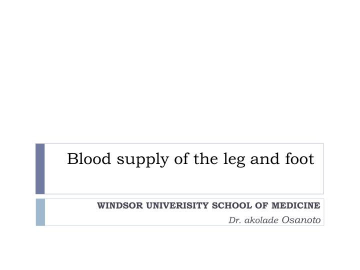 blood supply of the leg and foot n.