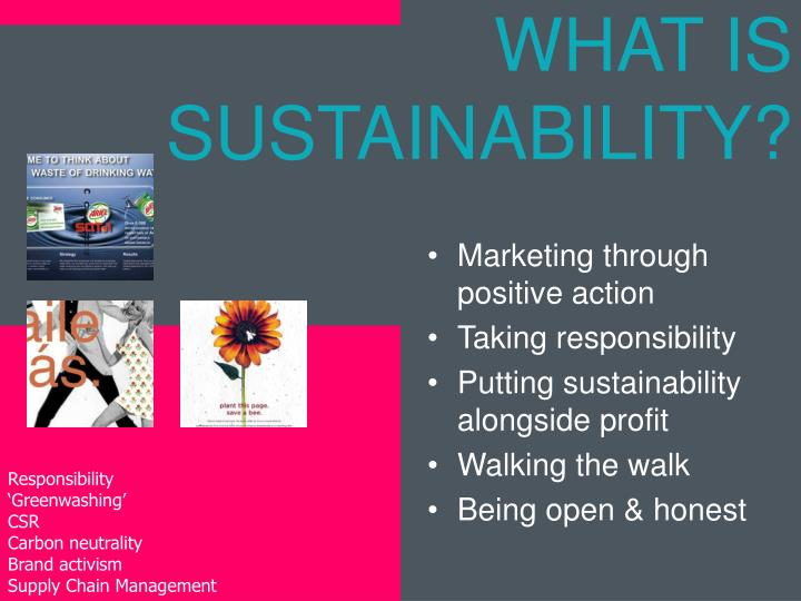 WHAT IS SUSTAINABILITY?