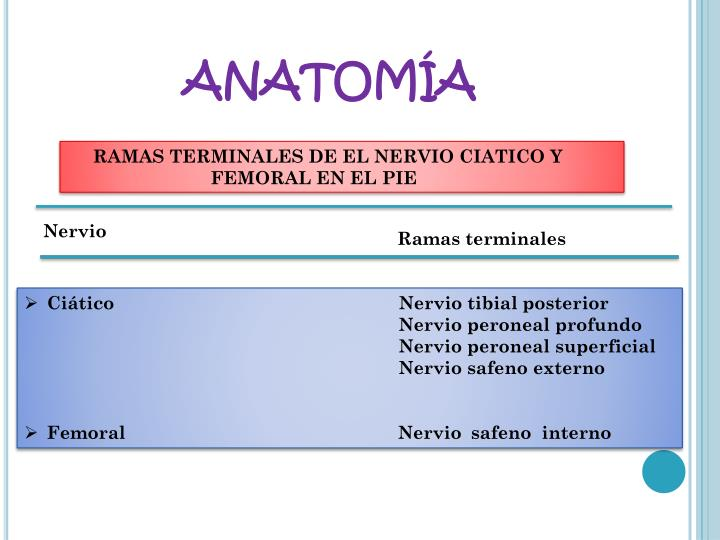 PPT - BLOQUEO DEL TOBILLO Y PIE PowerPoint Presentation - ID:2140262