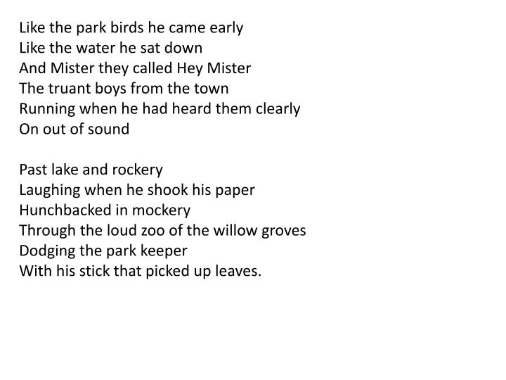 Like the park birds he came early