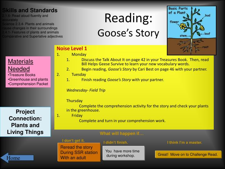Reading goose s story