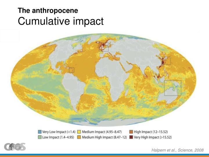 The anthropocene