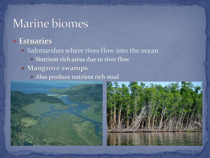 Marine biomes