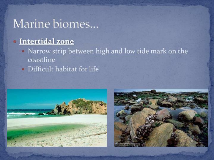 Marine biomes…