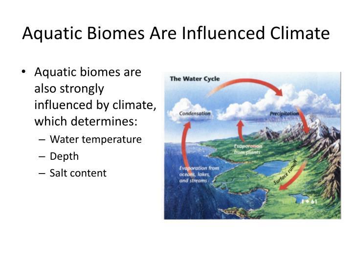 Aquatic Biomes Are Influenced Climate