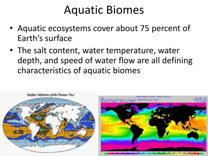 Aquatic Biomes