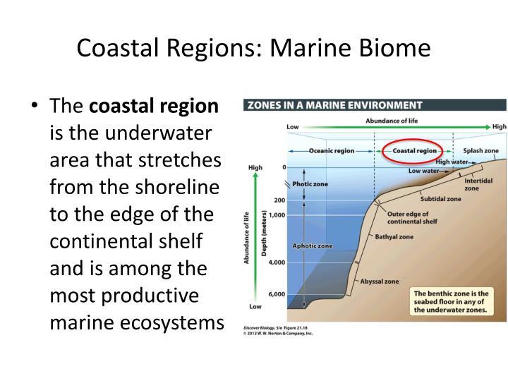 Coastal Regions: Marine Biome
