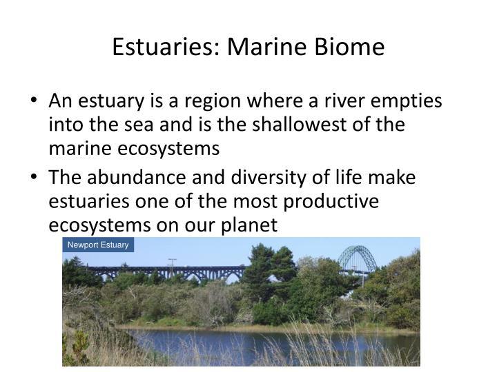 Estuaries: Marine Biome