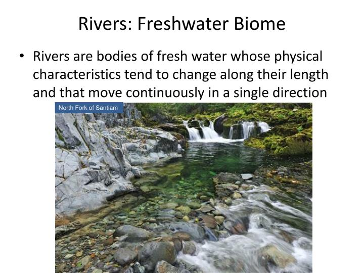 Rivers: Freshwater Biome