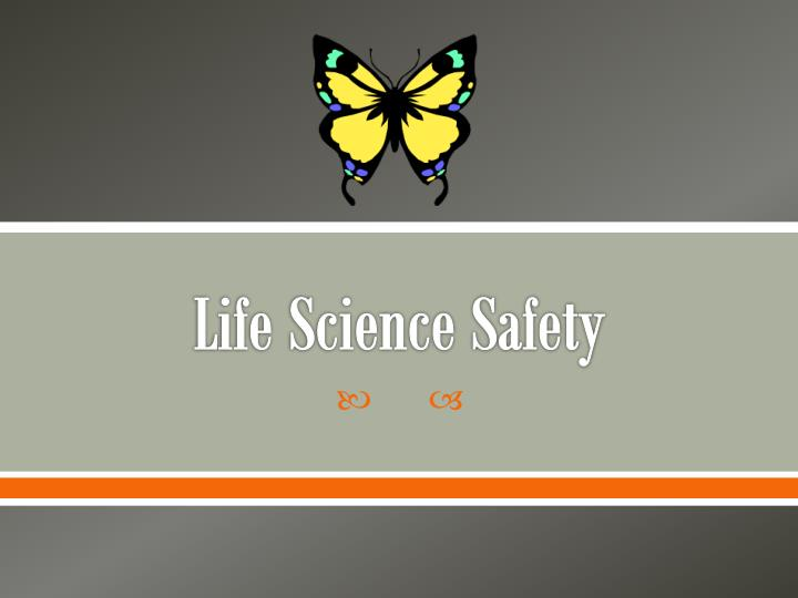 life science safety n.