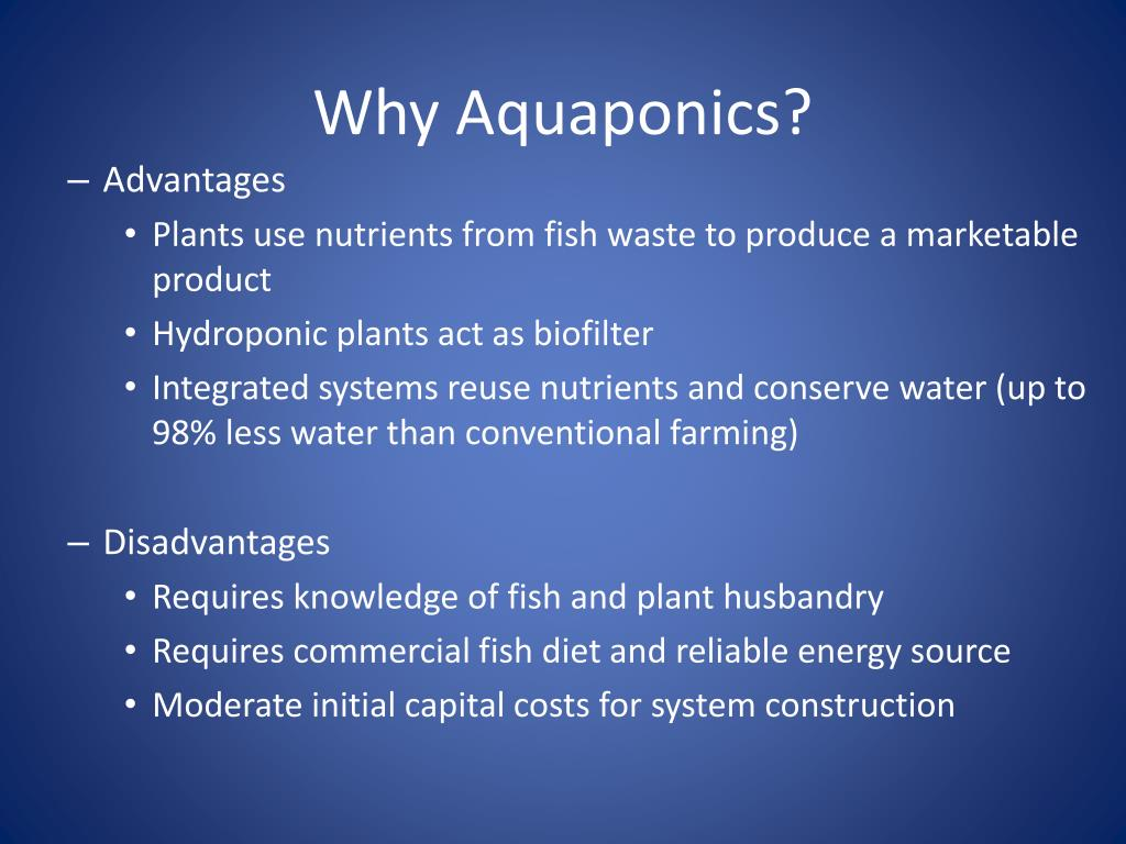 PPT - Introduction to Aquponics PowerPoint Presentation - ID:2141251