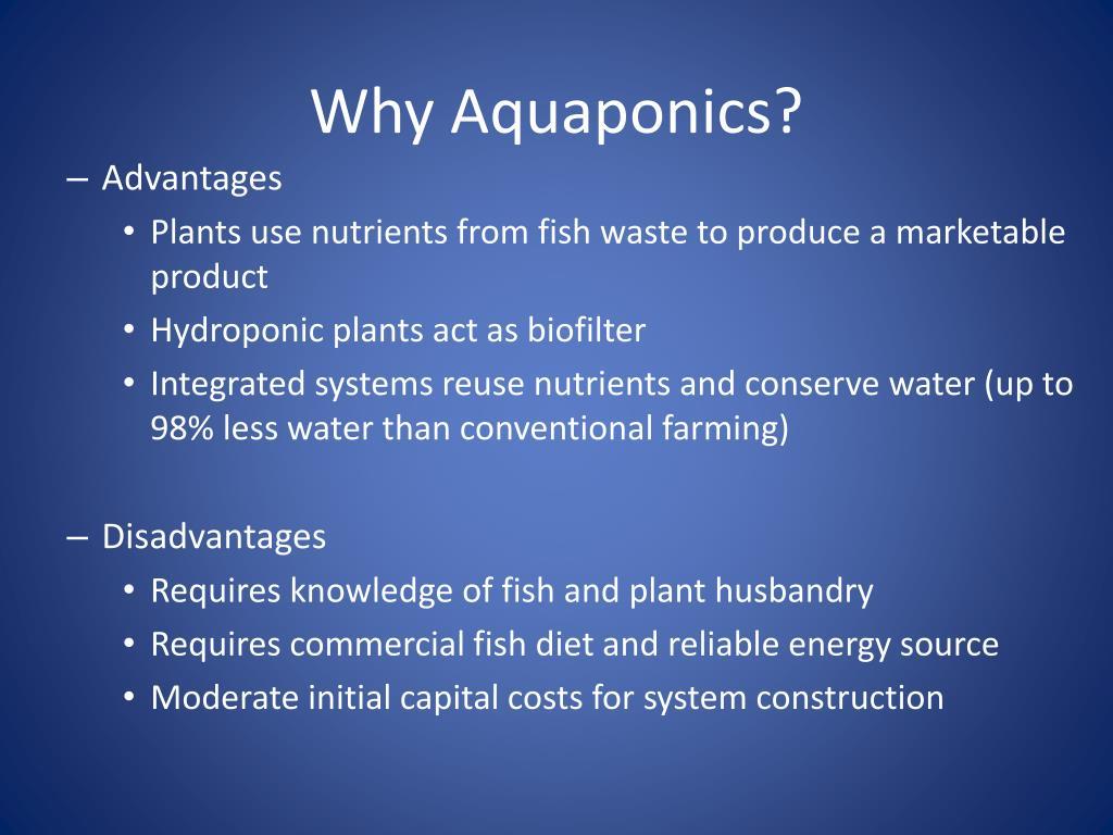 Aquaponics Costs