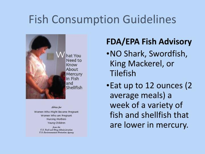 Fish Consumption Guidelines