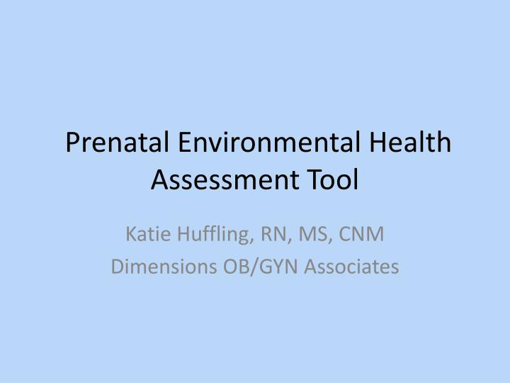 Prenatal Environmental Health Assessment Tool