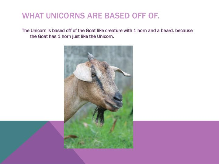 What unicorns are based off of