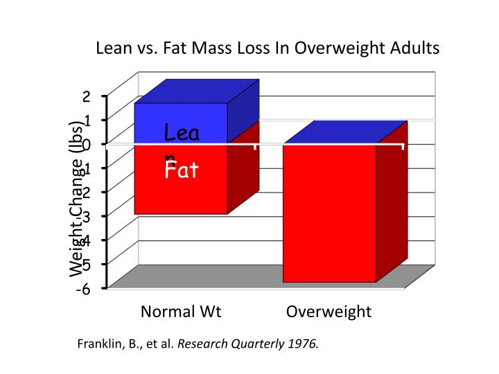 Lean vs. Fat Mass Loss In Overweight Adults