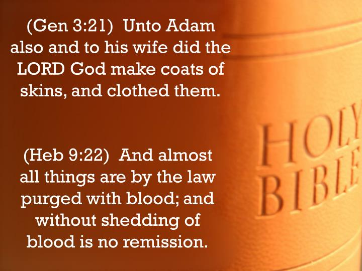 (Gen 3:21)  Unto Adam also and to his wife did the LORD God make coats of skins, and clothed them.