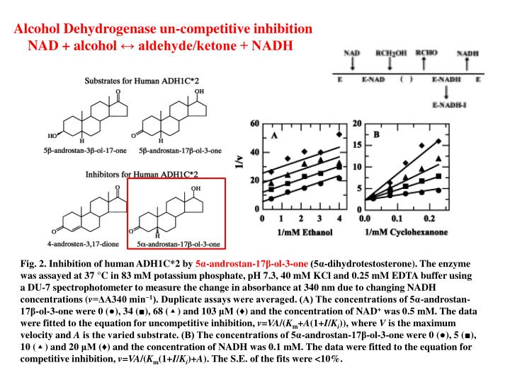 Alcohol Dehydrogenase un-competitive inhibition