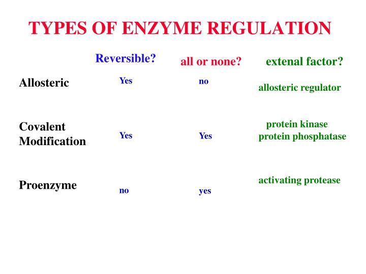 TYPES OF ENZYME REGULATION