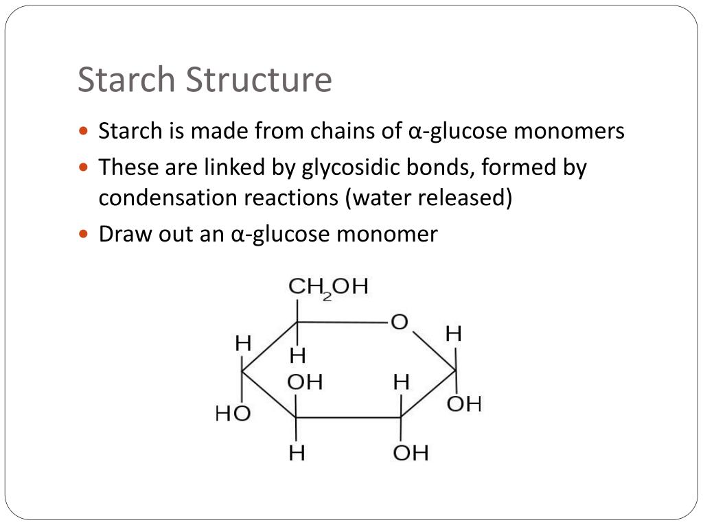Ppt Starch Glycogen And Cellulose Powerpoint Presentation Free Download Id 2142751