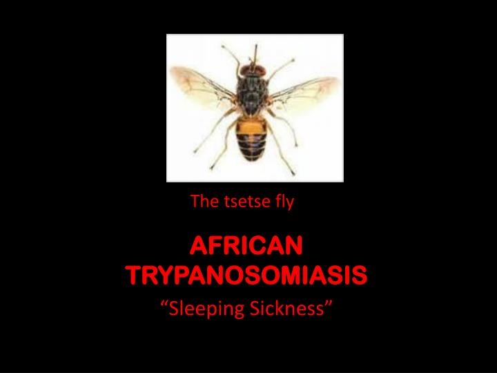 african trypanosomiasis n.