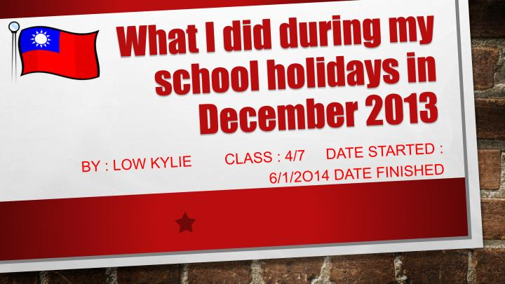 what i did during my school holidays in december 2013 n.