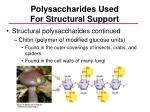 polysaccharides used for structural support1