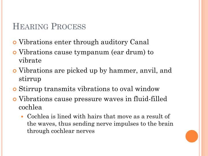 Hearing Process