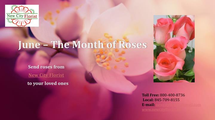 june the month of roses n.
