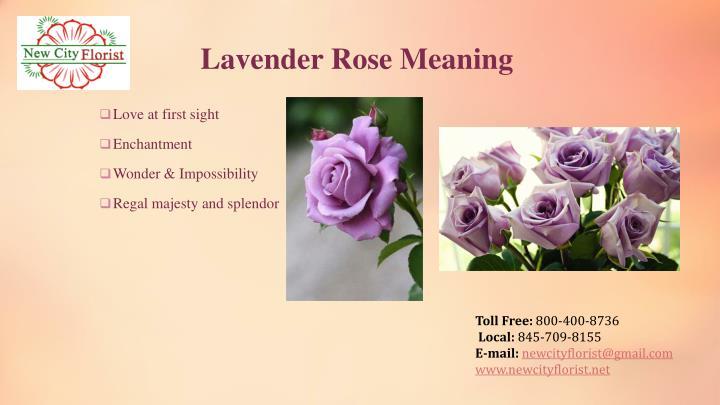Lavender Rose Meaning