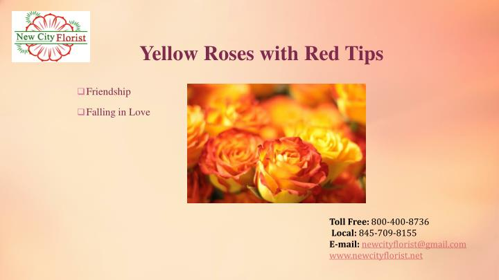 Yellow Roses with