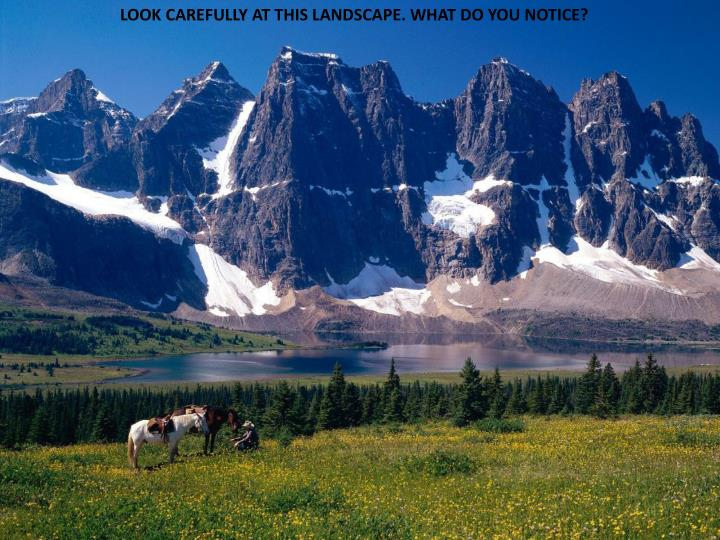 LOOK CAREFULLY AT THIS LANDSCAPE. WHAT DO YOU