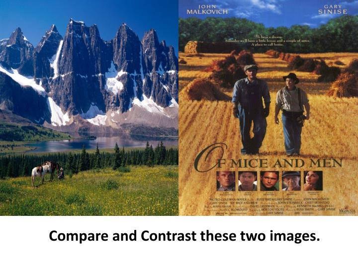 Compare and Contrast these two images.