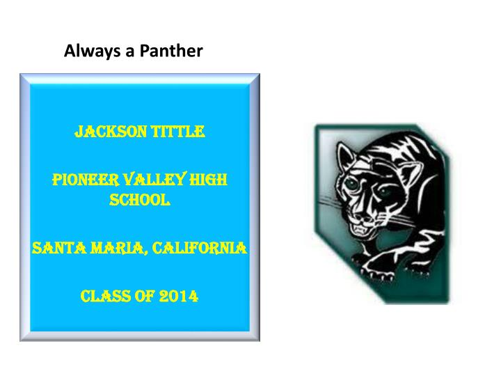 always a panther n.