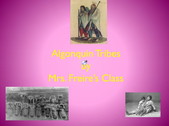 algonquin tribes by mrs freire s class n.