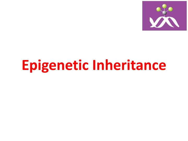 Epigenetic inheritance