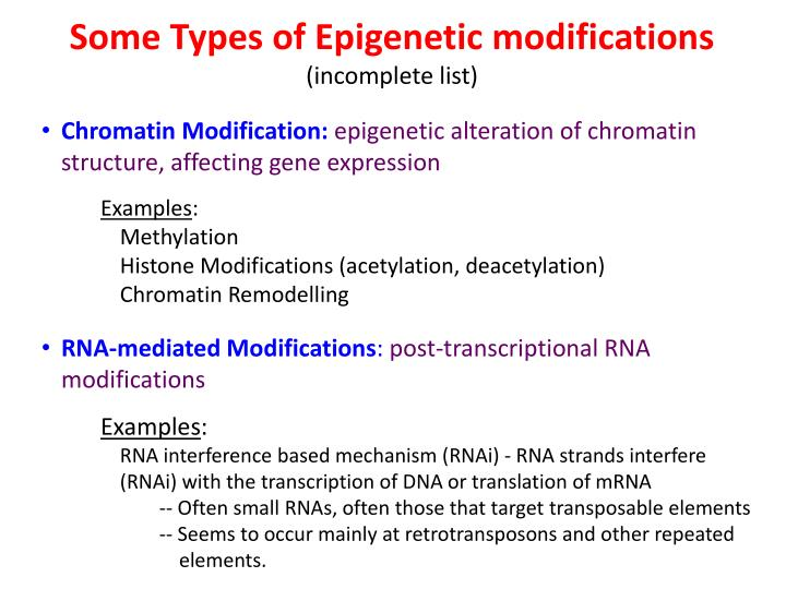 Some Types of Epigenetic modifications