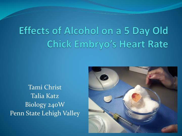 effects of alcohol on a 5 day old chick embryo s heart rate n.