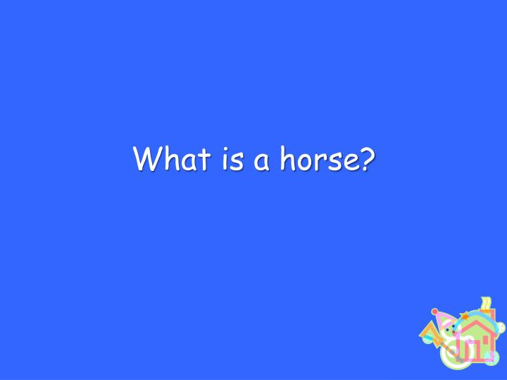 What is a horse?