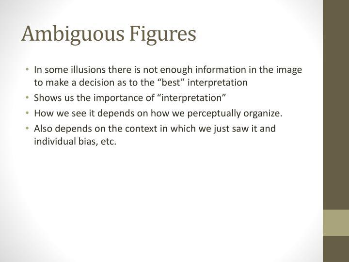 Ambiguous Figures