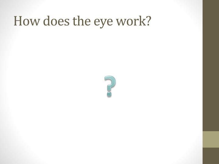 How does the eye work?