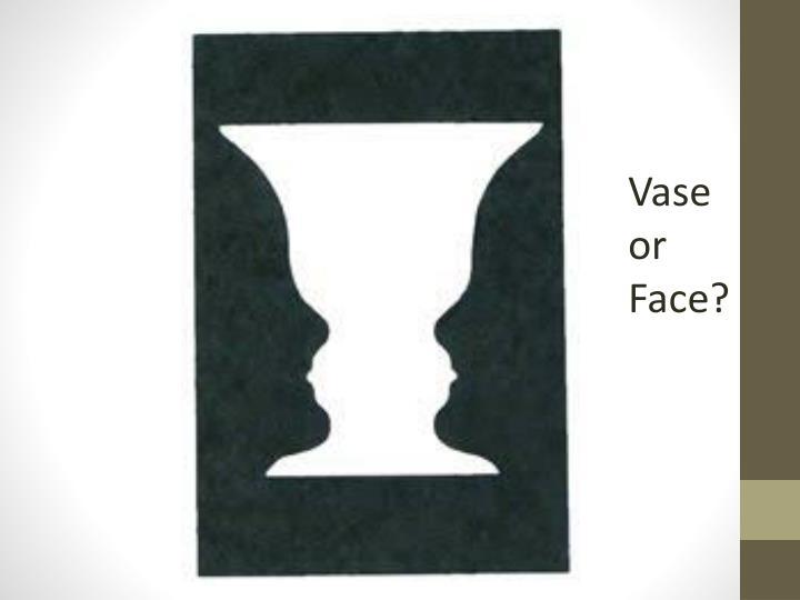 Vase or Face?
