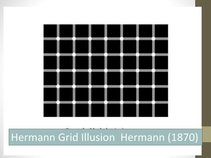 Hermann Grid Illusion  Hermann (1870)