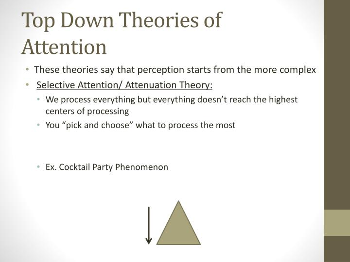 Top Down Theories of Attention