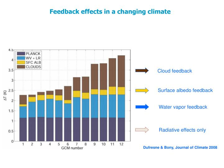 Feedback effects in a changing climate