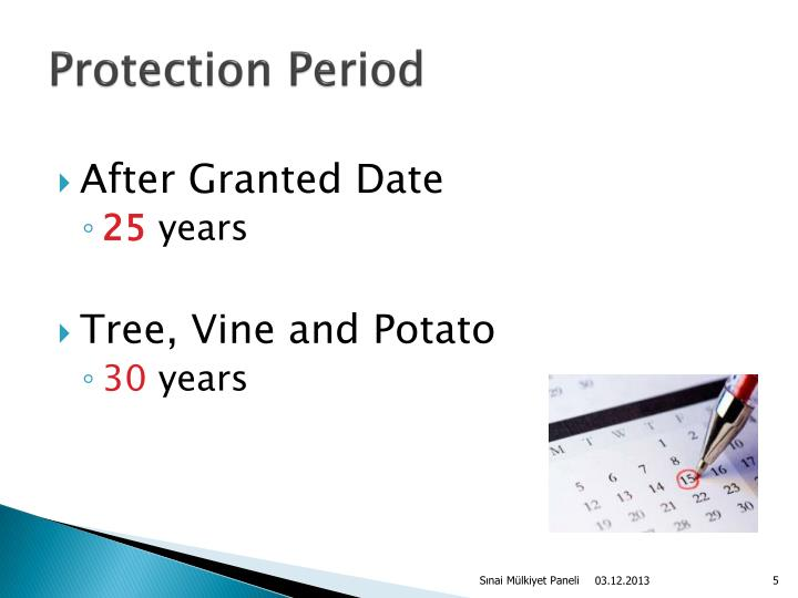 Protection Period